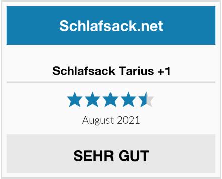 Häglöfs Schlafsack Tarius +1 Test