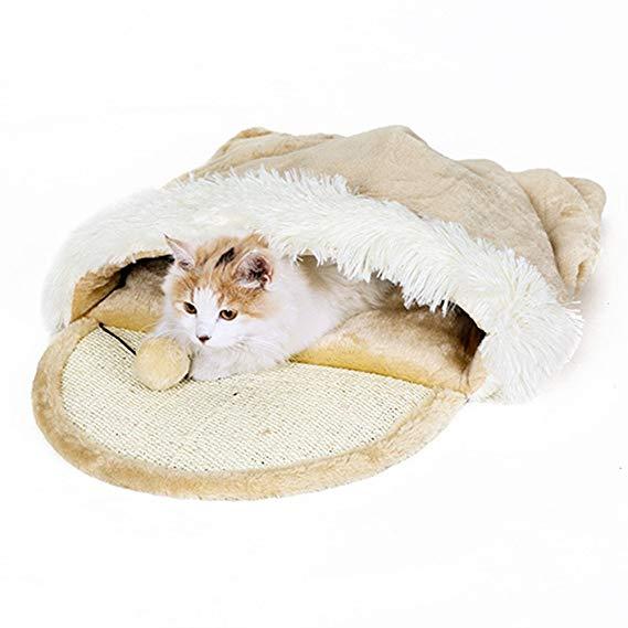 No Name Taoking Katzenhöhle und Bett