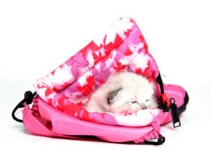 So finden Sie den perfekten Schlafsack für Ihr Haustier