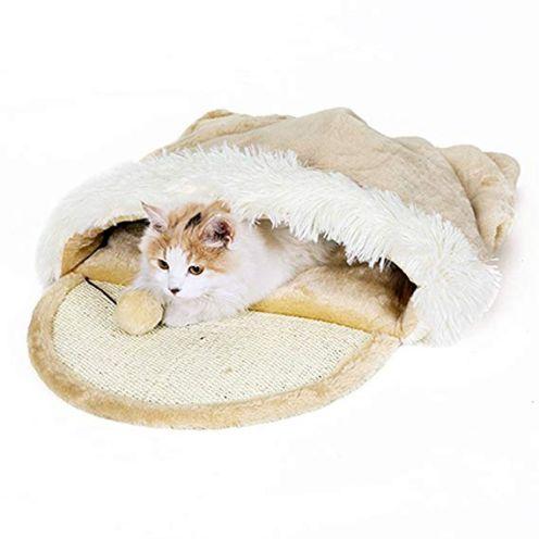 Taoking Katzenhöhle und Bett